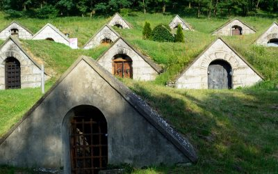 Ungarische Weinbaugebiete
